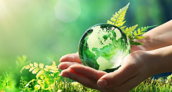 Sustainability at Südzucker:<br> We grow our business by actively taking ecological and social responsibility Image