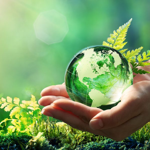 Sustainability at Südzucker Image