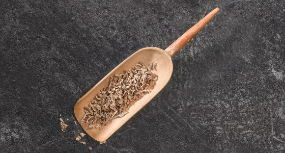 Pressed Sugar Beet Pulp Image