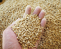 Animal Feed Image